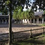 legiteduclocher_equestre_blayais